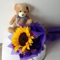 GF0799-soft toy teddy bear in a sunflower
